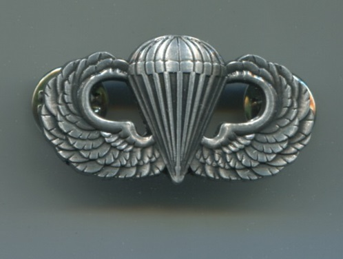 Paratroopper basic qualification wings