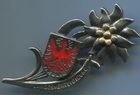Edelweiss badge with Landesverteidigung written territorial defense, scudetto with eagle of tirolo and tiroler written. Size 63x27 mm