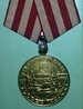 Medal for the defens